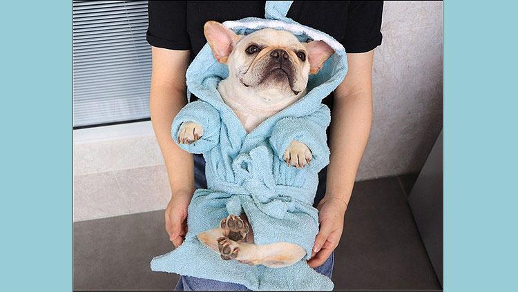 best dog towel