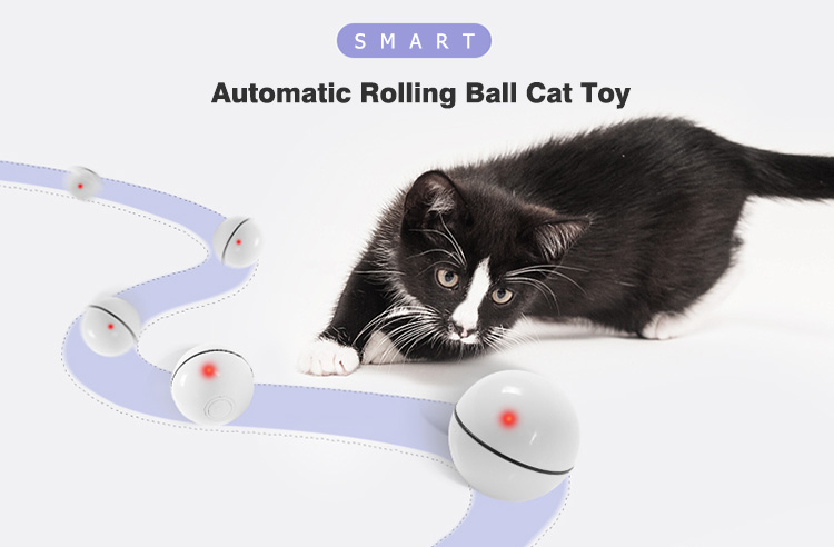 smart cat toy ball