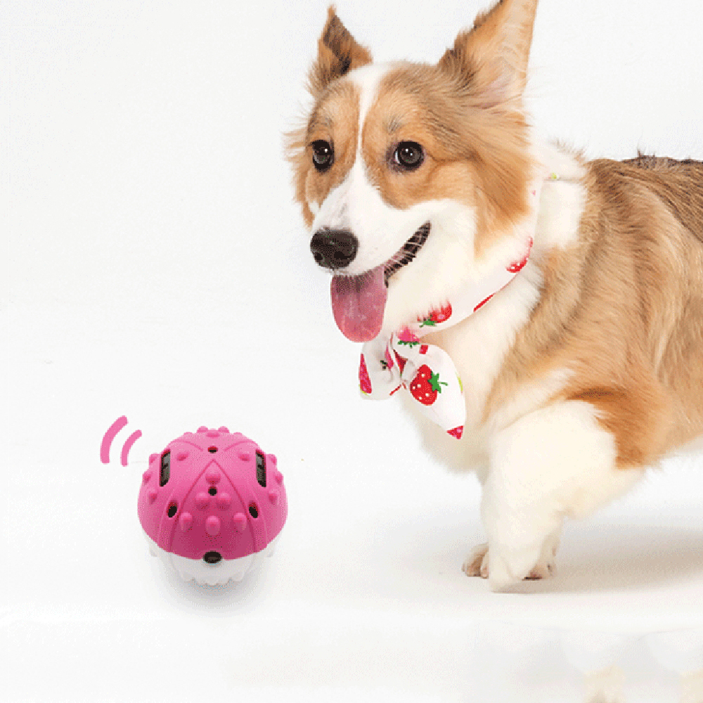 magic roller, moving dog ball, moving ball dog toy, interactive dog toys, dog toy ball, interactive toys, dog soccer ball, interactive puppy toy, rubber dog ball, Interactive Dog ball, electronic interactive dog toys, automatic dog toy