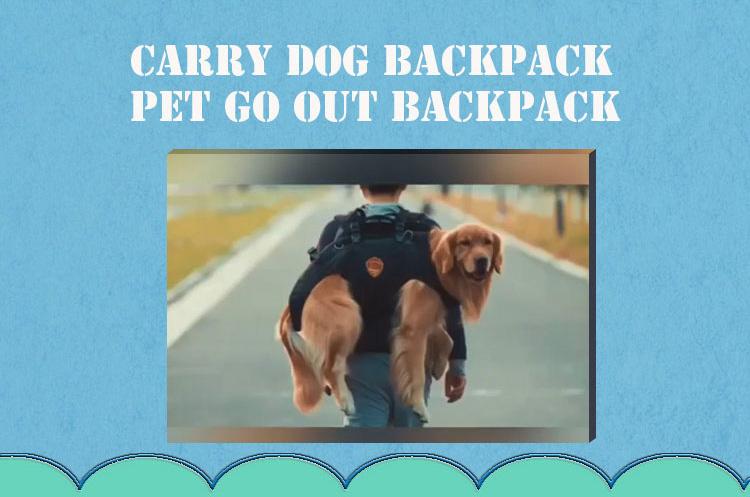 big dog carrier backpack