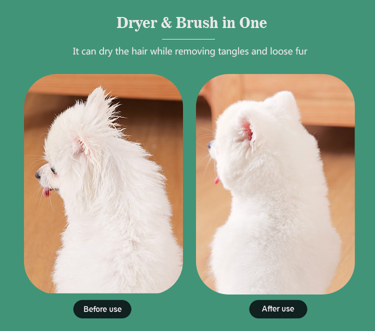 Dryer and brush 2 in 1