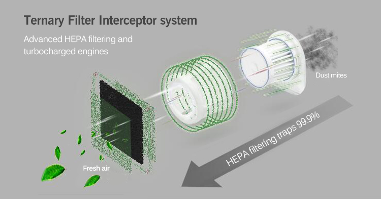 Ternary Filter Interceptor System