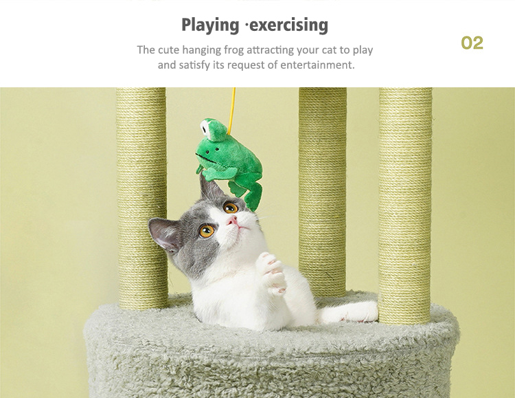 Playing and exercising